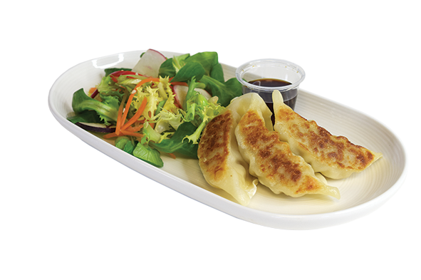 Steam-Fry Gyoza and Mini Salad Starter & Dip