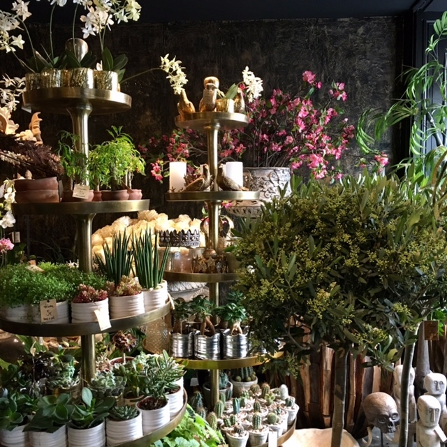 shops | eclectic shop displays | Moor Paris