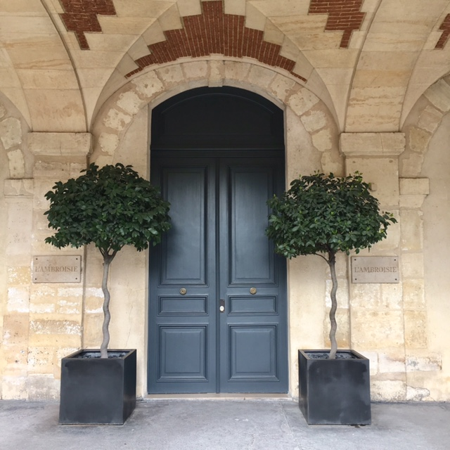 Aspirational inspiration | to have a door entrance as grand and as beautiful as in Places des Vosges