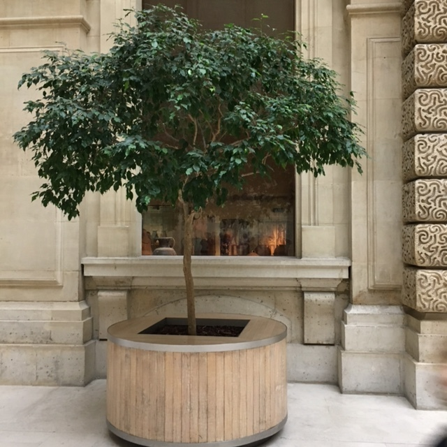 nature | to soften and welcome in Le Louvre