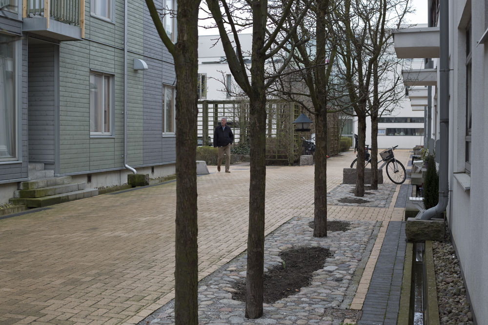 Malmo's wet climate is celebrated in the landscape design of Vastra Hamnen. During rainstorms, water is collected from roofs into street side runnels.