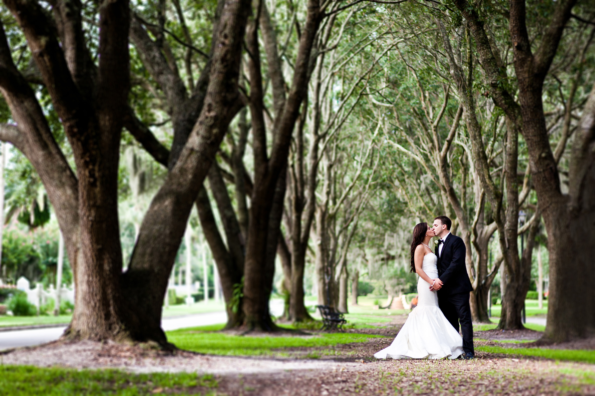 adam-szarmack-bride-groom-kiss-trees.jpg