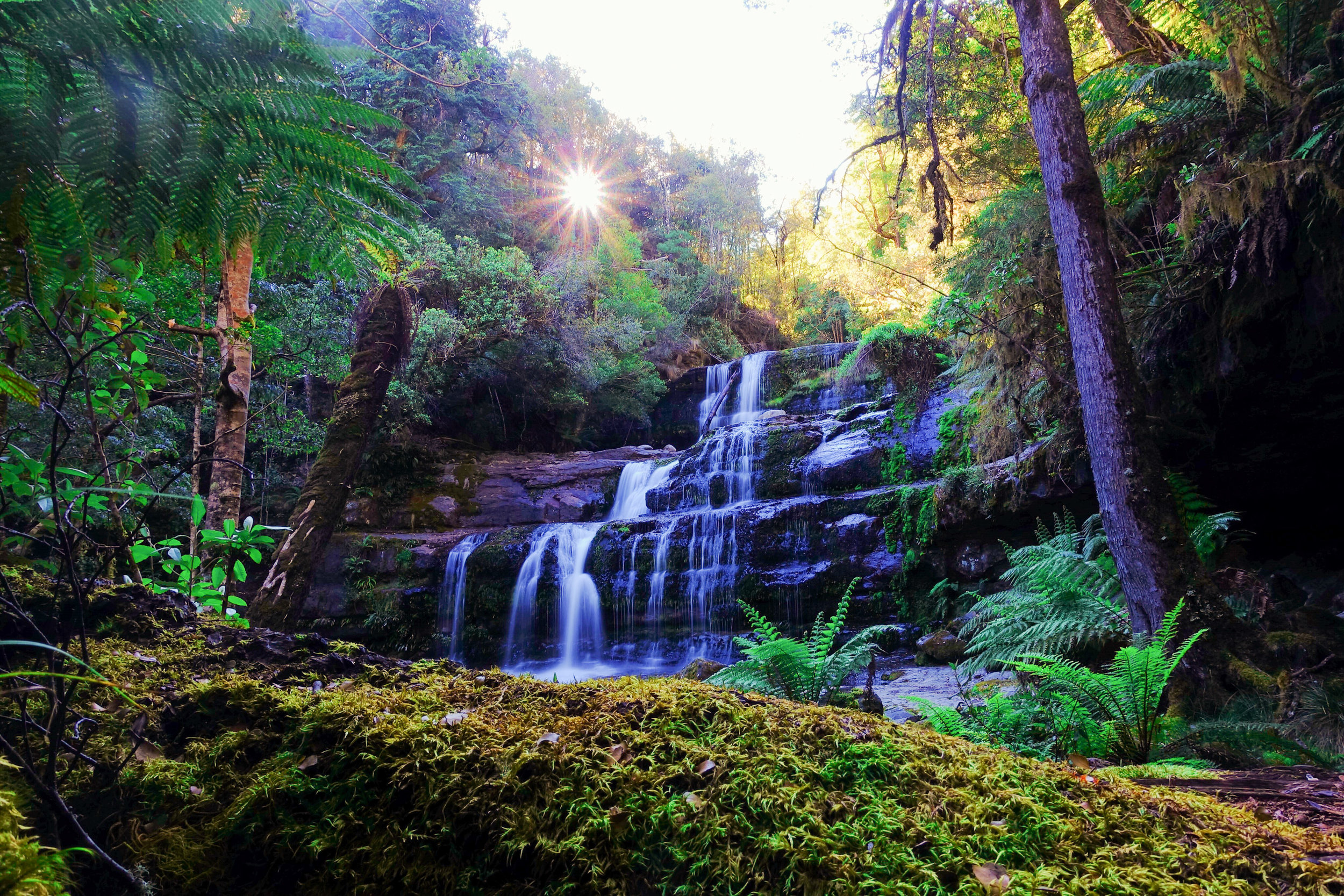 2.)Liffey Falls - Located 1 hour drive from Launceston, Liffey Falls is well worth the (dirt road)detour for the stunning scenery and tranquility.Allow time here to enjoy a a picnic lunch.
