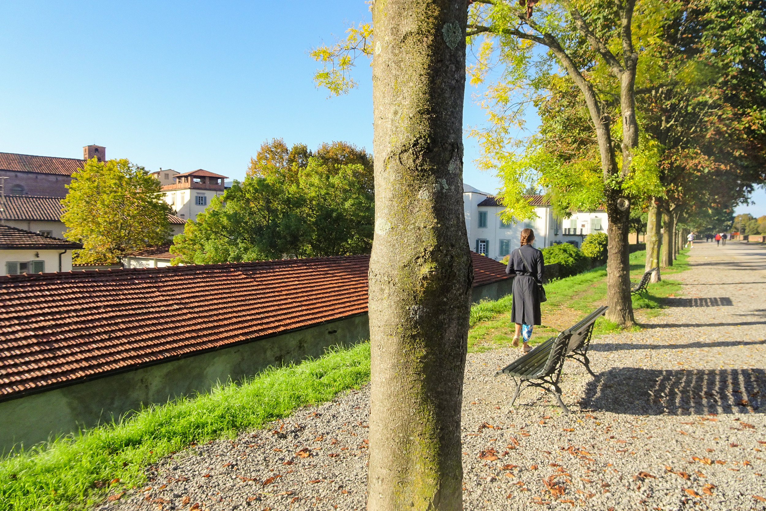 6.) Lucca - We were recommended to visit this medieval town by a friend. You can park for free outside the walls of Lucca, giving you access to explore its beautiful cobblestone lanes. Follow your nose and try some fresh pastries from one of the delicious bakeries.