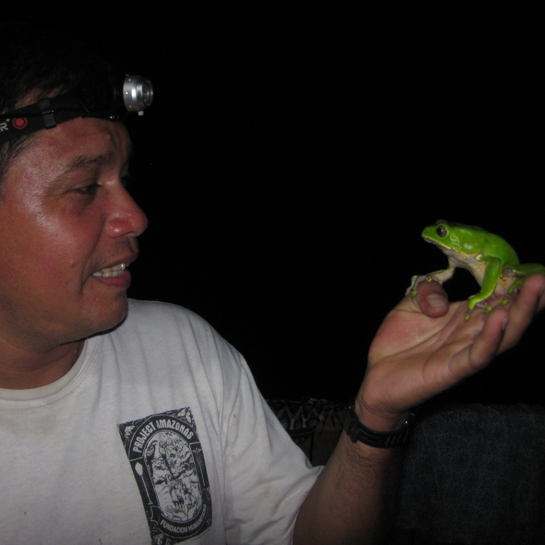 Emerson Torres with giant monkey frog ( Phyllomedusa bicolor )