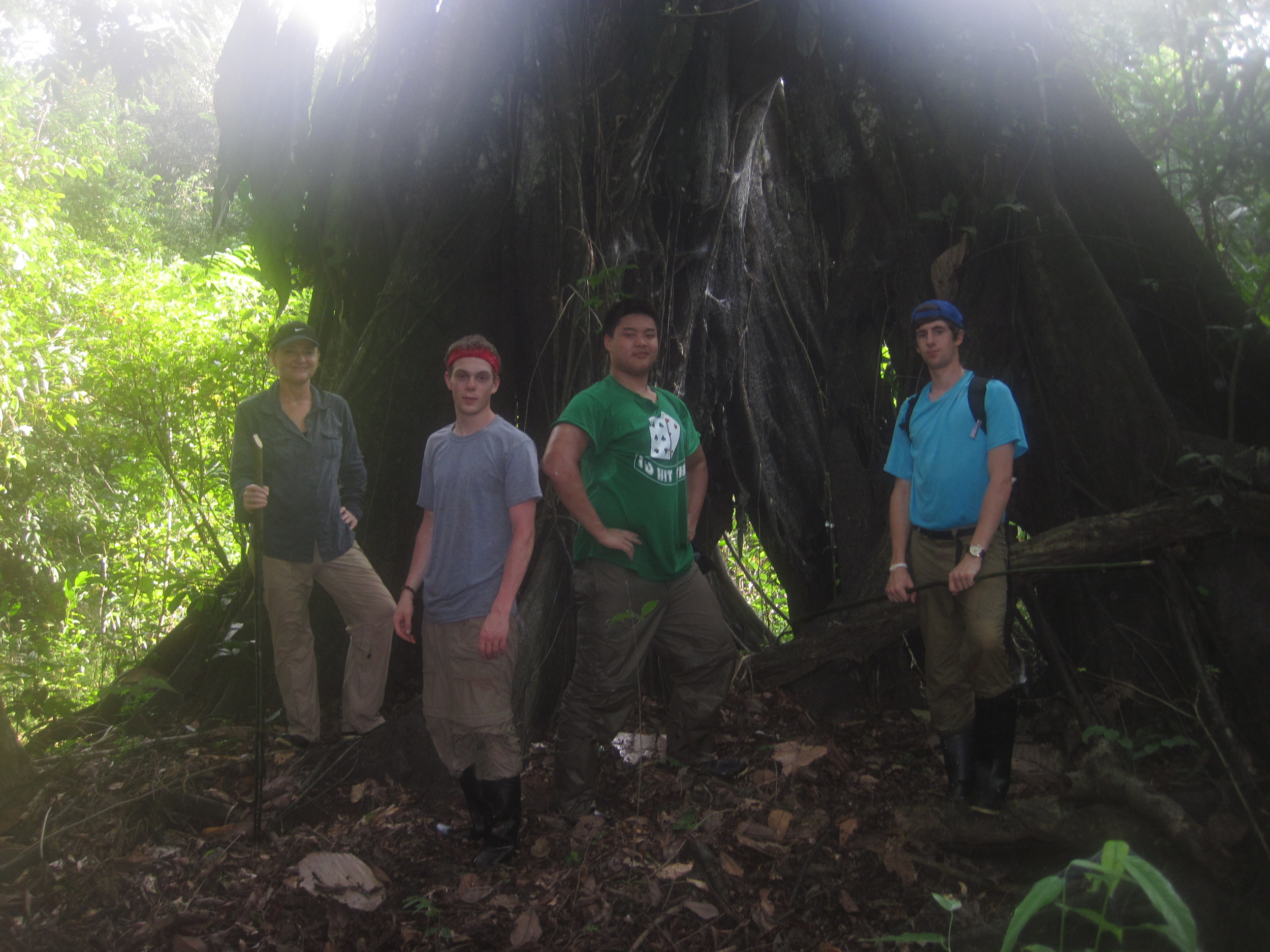 Students check out a  Ficus  tree on the swamp trail to Lunes Cocha
