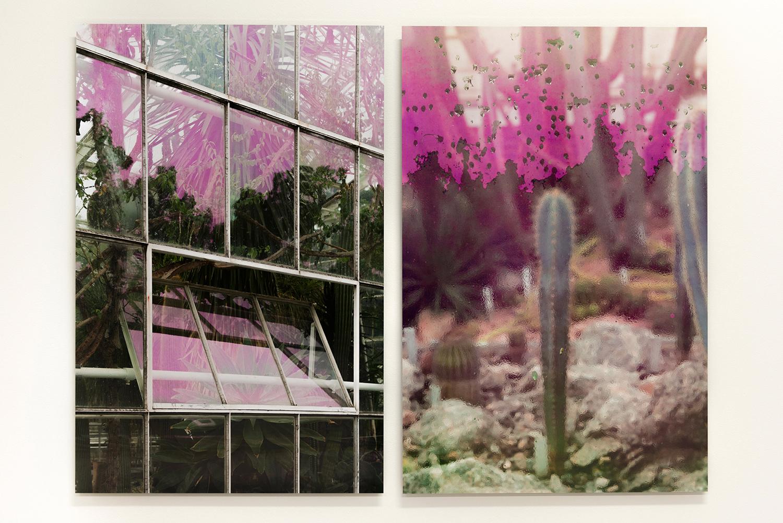 Fresh Fruit From Unknown Places 01 Bilder je 60 x 90 cm, Inkjetprints auf Aluminium, je Auflage von 3 (+1 AP)