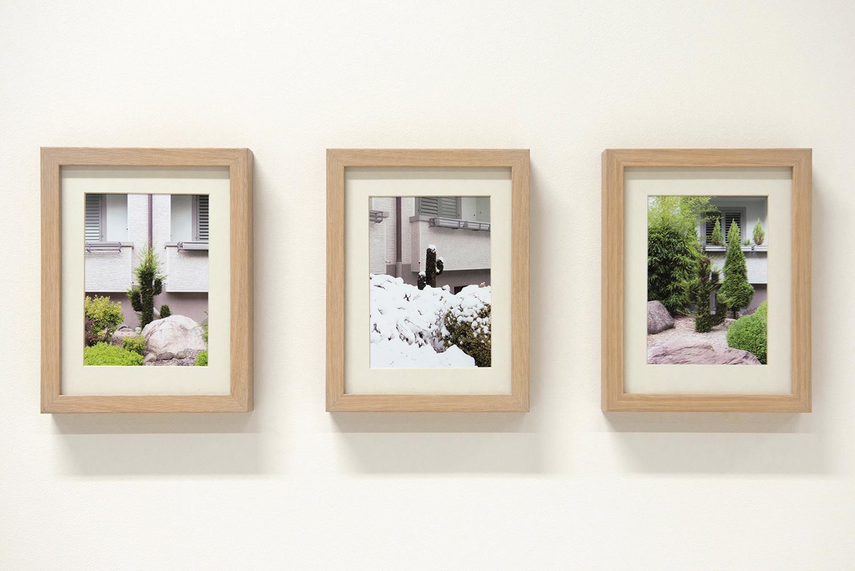 Fresh Fruit From Unknown Places 02 Bilder je 18 x 24 cm (inkl. Rahmen), Inkjetprints gerahmt (Modell Ribba), je Auflage von 3 (+1 AP)