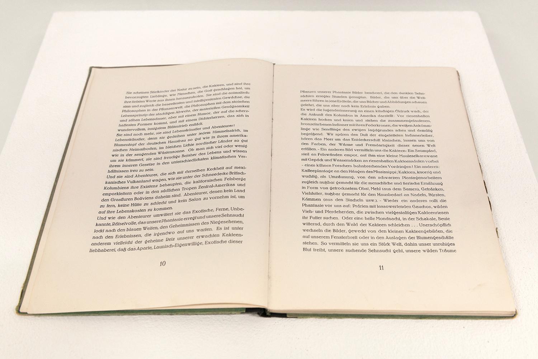 """Fresh Fruit From Unknown Places 03 """"Die Schönheit Unserer Kakteen"""", Harry Maass (Hrsg.), 1924 (aufgeschlagen: Doppelseite 10/11), Unikat"""