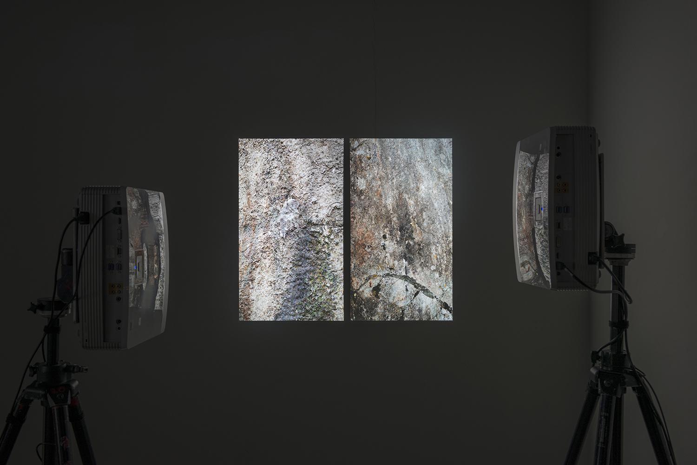 Samuel Rauber Nach der Natur Fotografie Photography Kunst Art