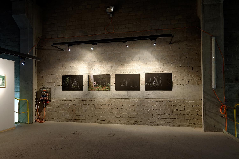 Ausstellungsansichten Junge Kunst Schwyz, September 2013