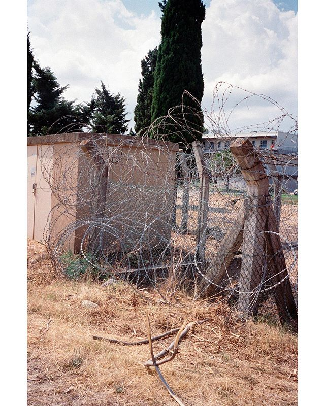 SPIKES, 2019 - #spikes #landscape #stilllife