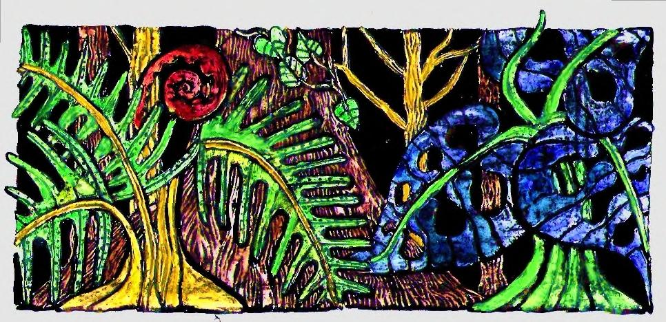 selva colores.jpg