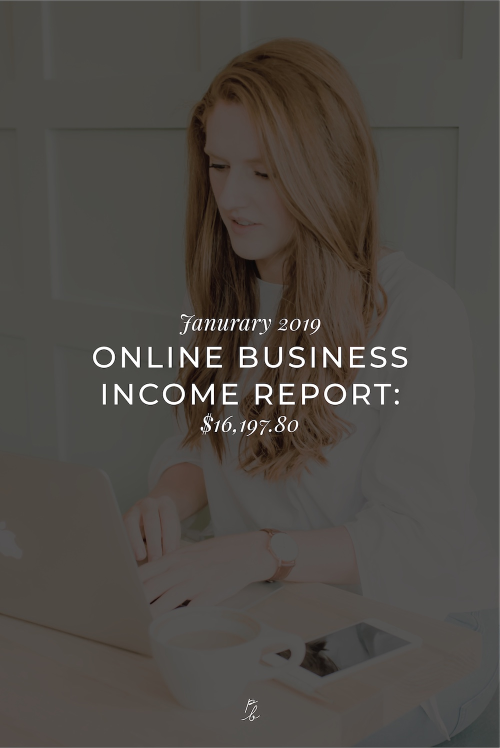 January 2019 online business income report.jpg