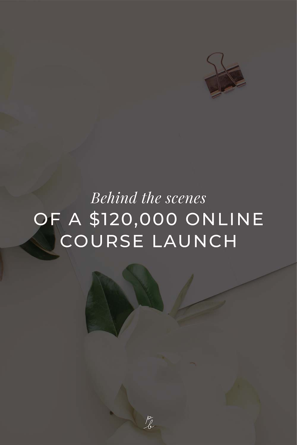 Behind the scenes of a $120000 online course launch