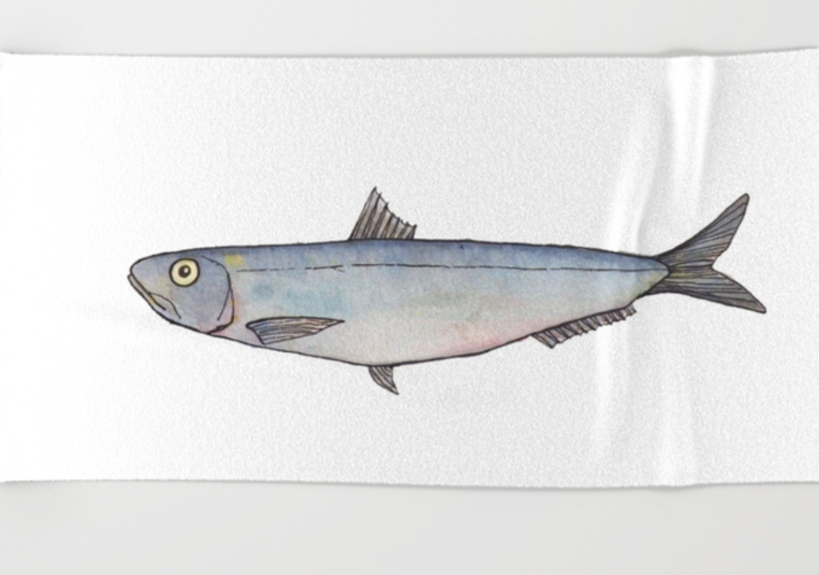 Sardine beach towel