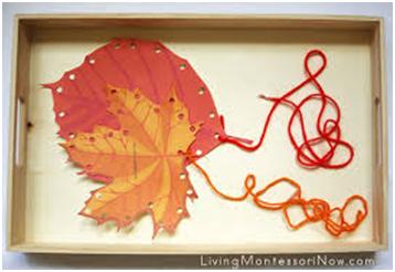 leaf lacing.png