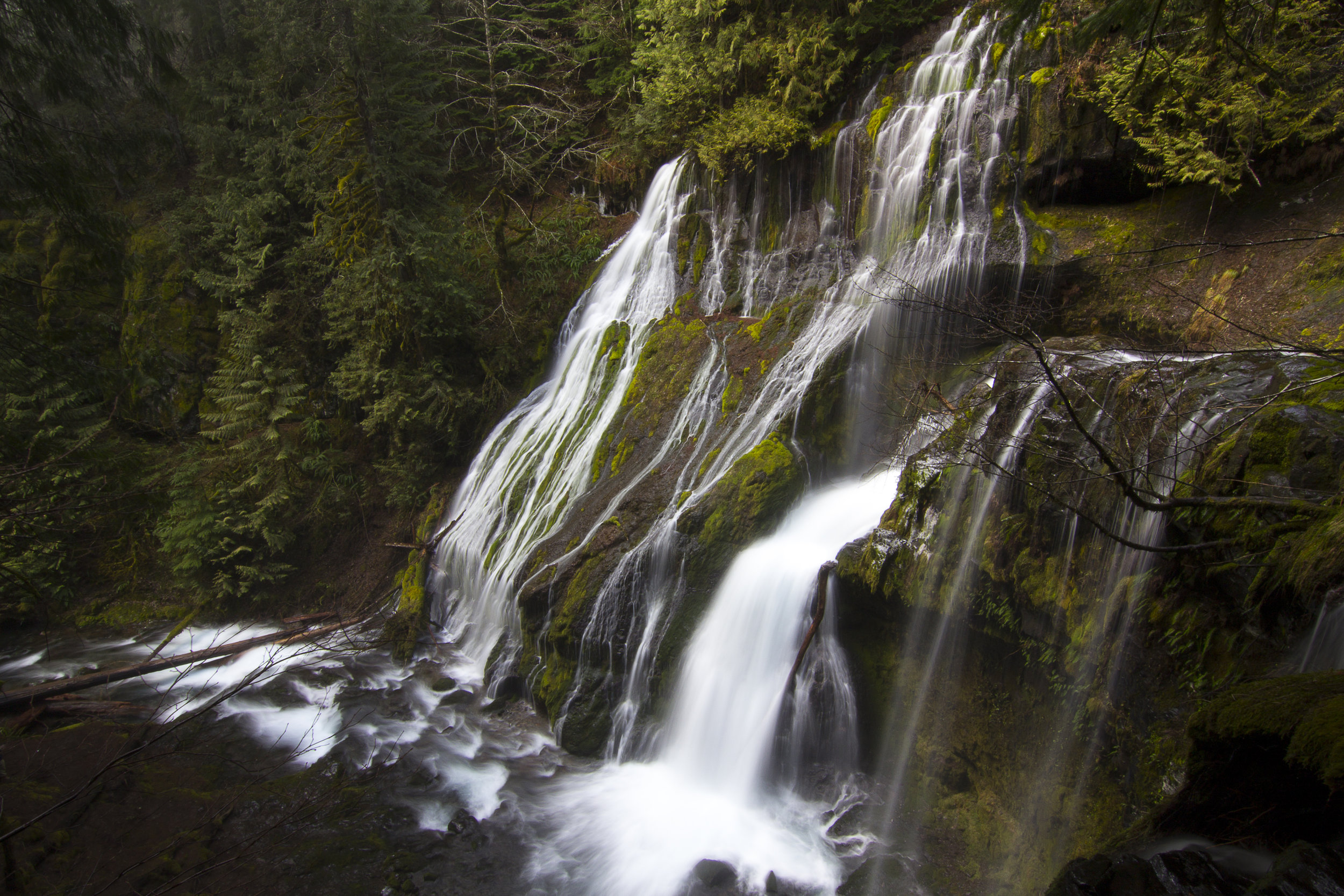 Panther Creek Falls, WA