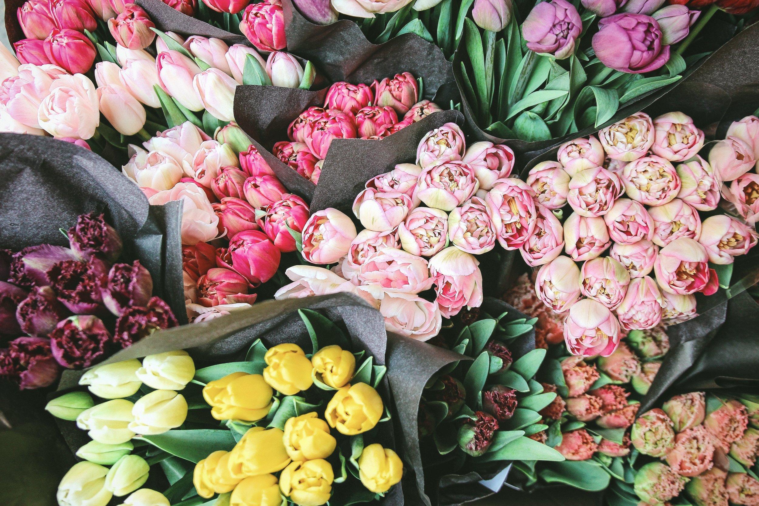 Sanctuary Flowers.jpg