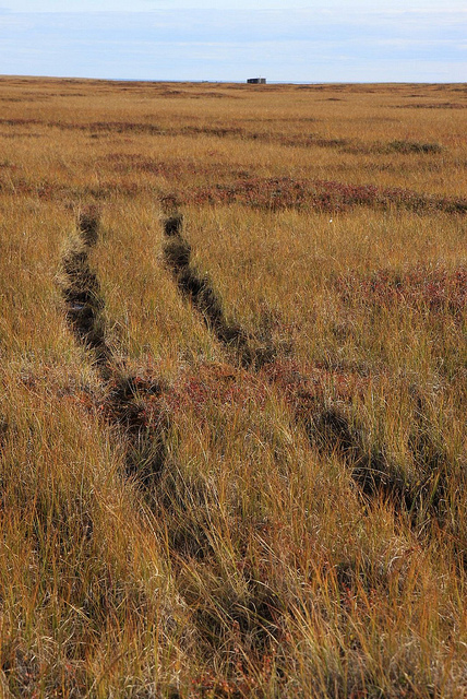 ATV users can leave a lasting impact on the landscape, especially in fragile desert, grassland, wetland or tundra.