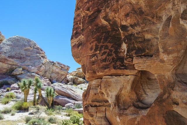 Gold Butte Wilderness Petroglyph Photo: Cheryl Hobbs cc 2.0