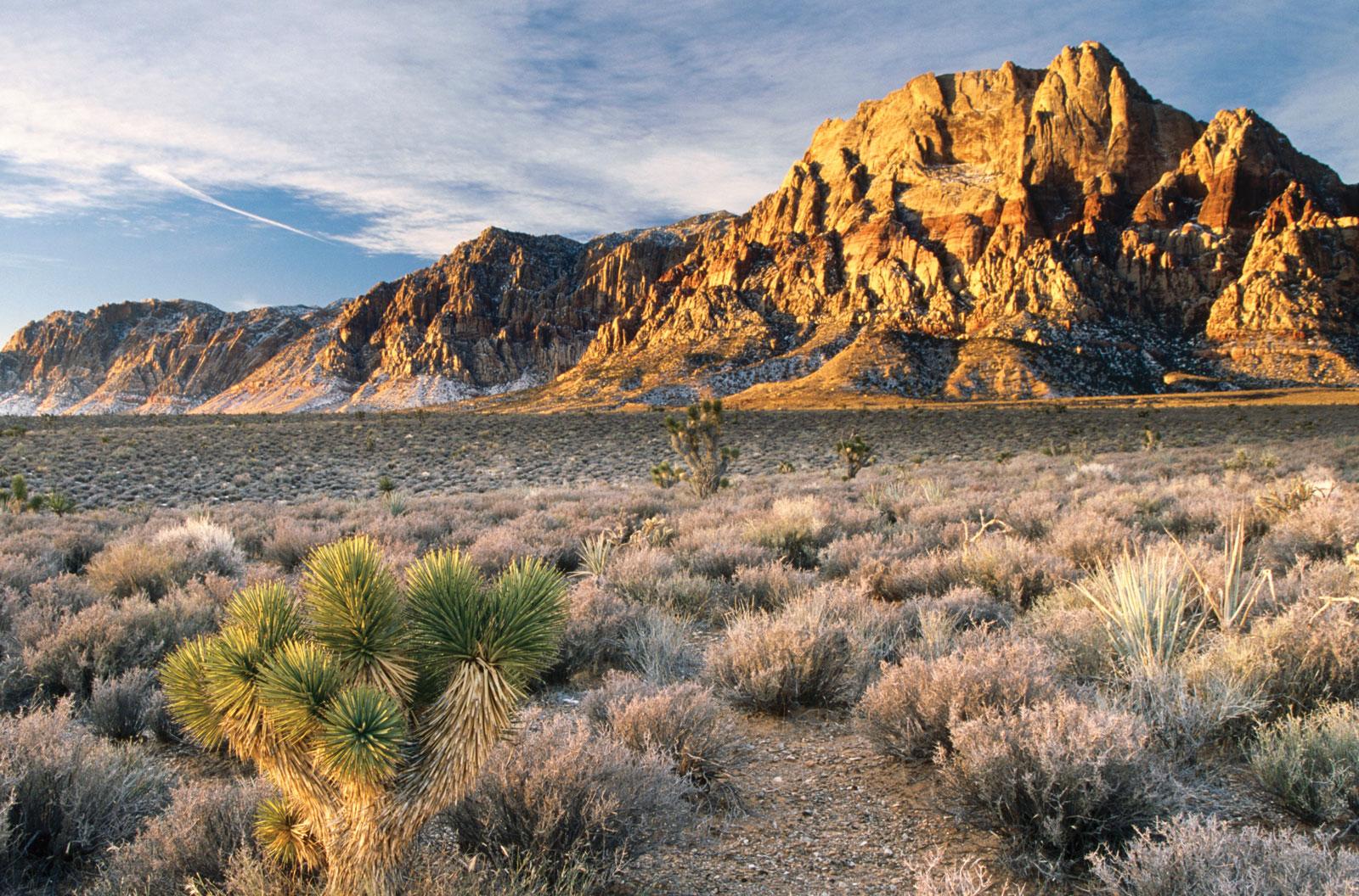 Red_Rock_Canyon.jpg