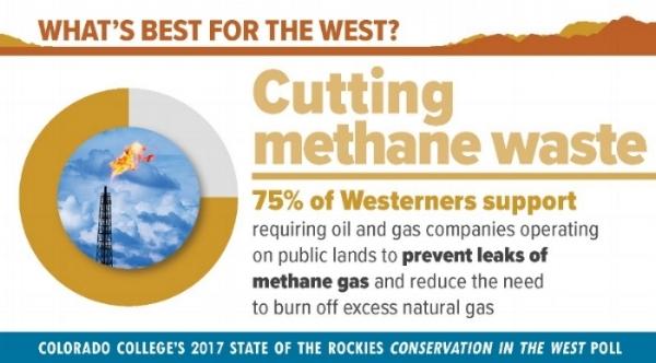 Methane pic.jpg