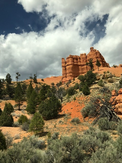 Southern Utah where Utah State Rep. Wheatley and his family hike.