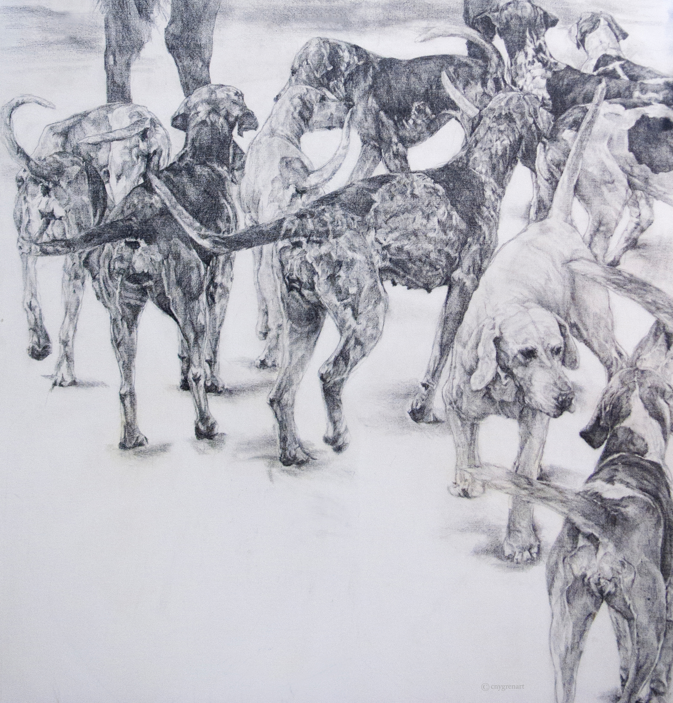 """""""Hounds at the Hunt - Study""""  Pencil on Canvas   48 x48  NA"""