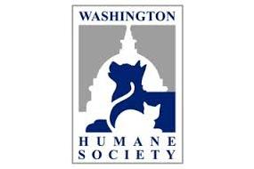wash humane society.jpeg