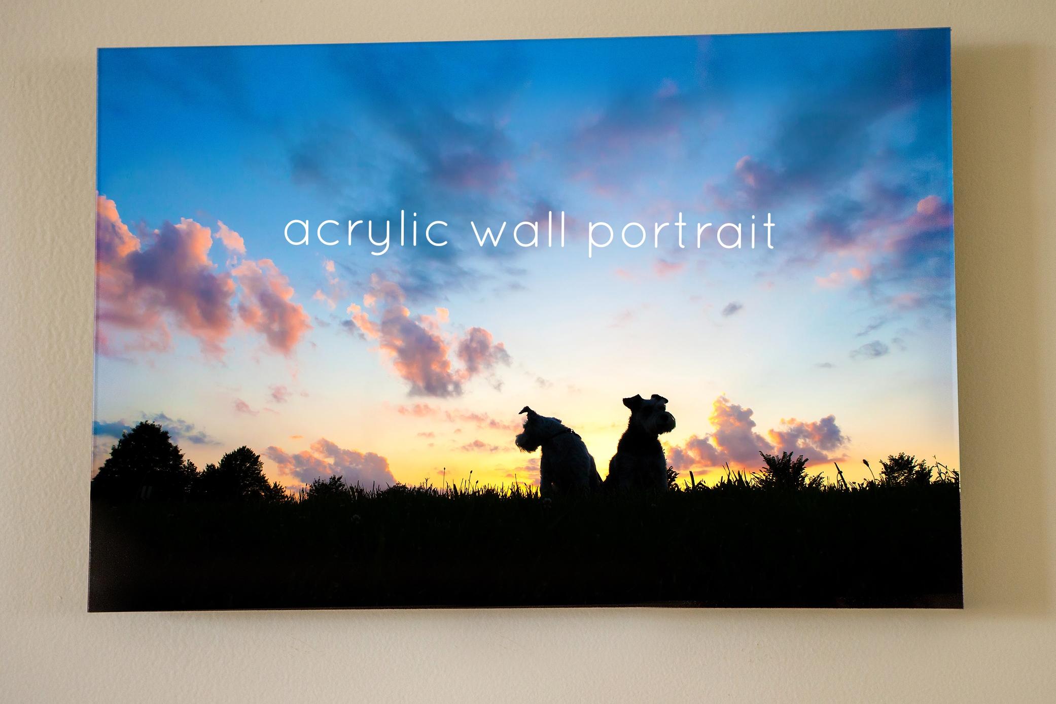 acrylic_wall_portrait.jpg