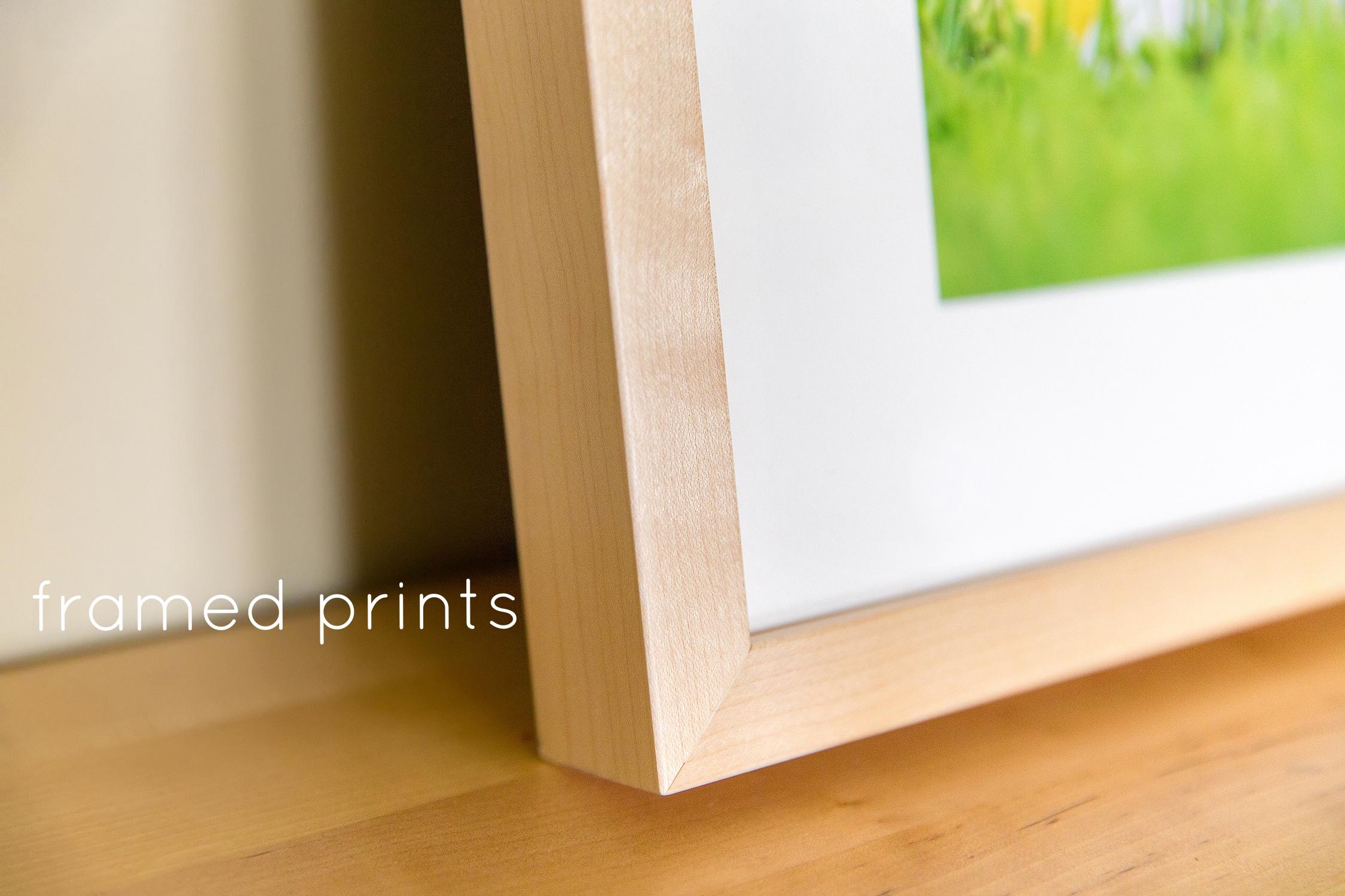 framed_print.jpg
