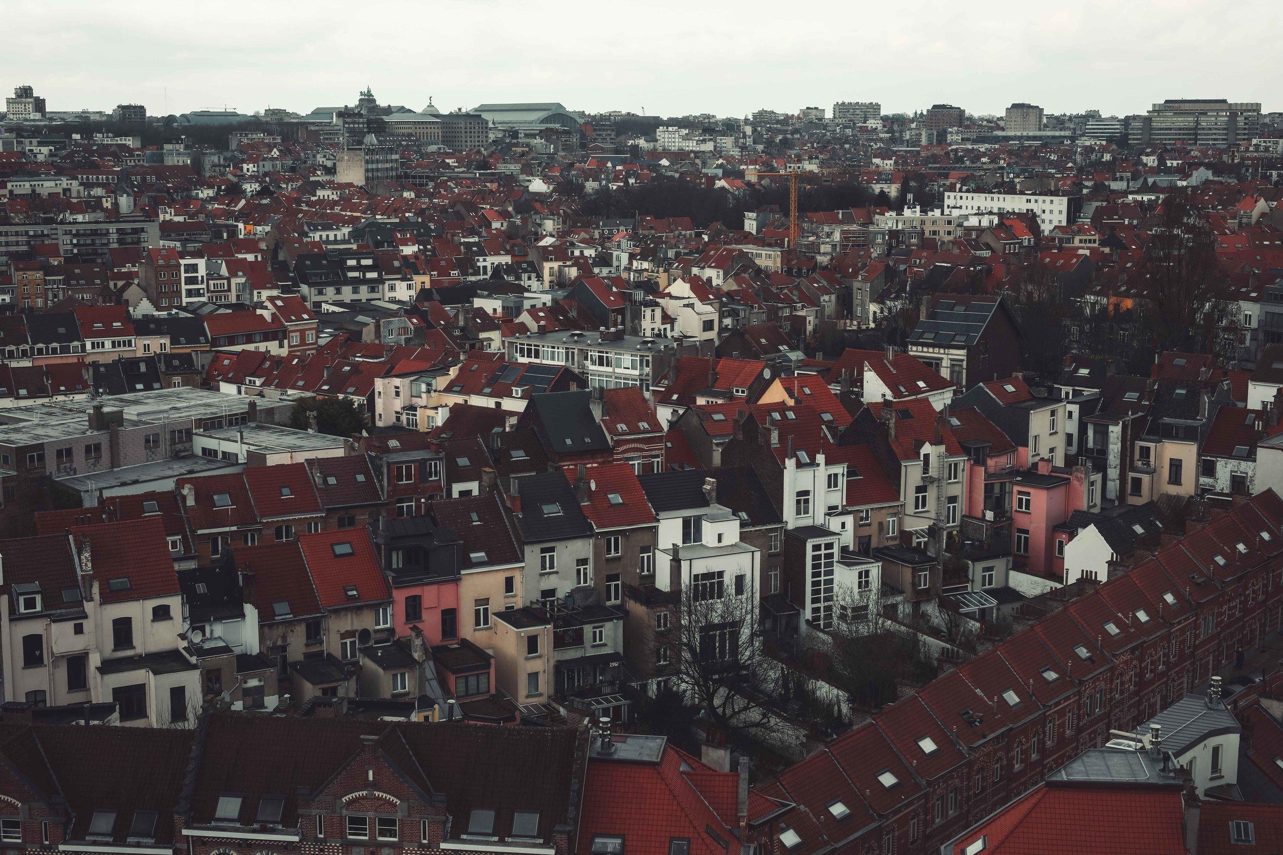 Roof Jvp-2.jpg