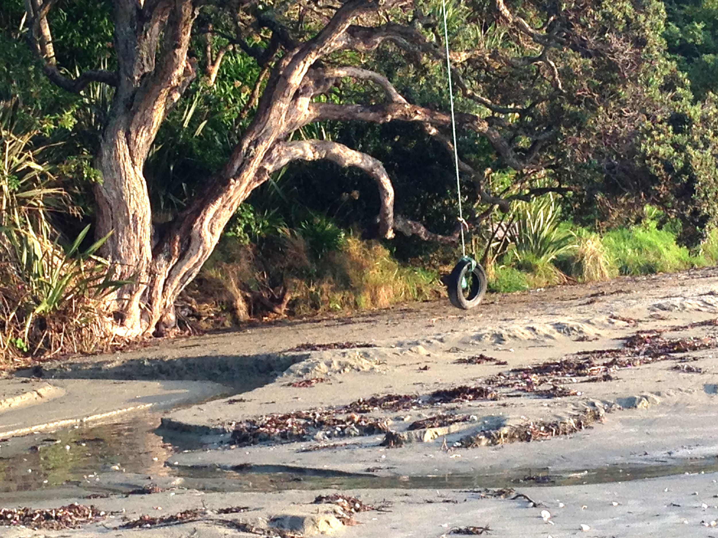 Beautiful Waiheke beaches are walking distance from the guesthouse