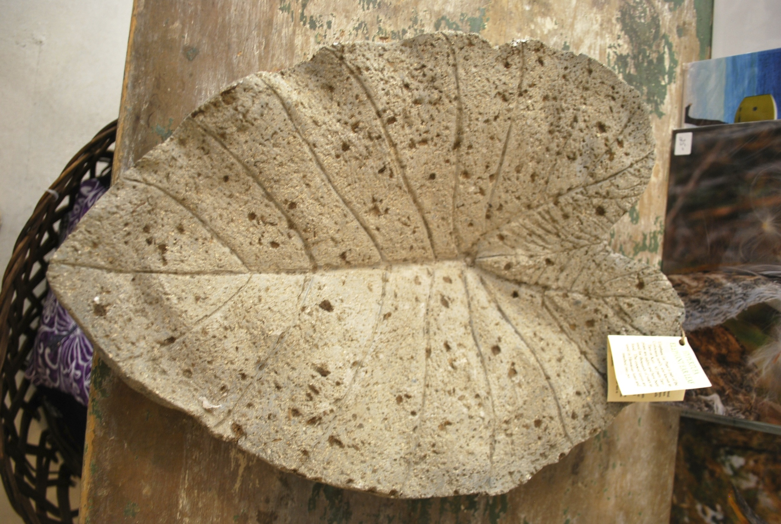 Hypertufa leaf.jpg
