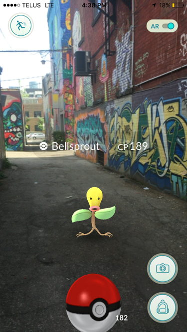 A wild Pokémon in the real world thanks to augmented reality (AR)
