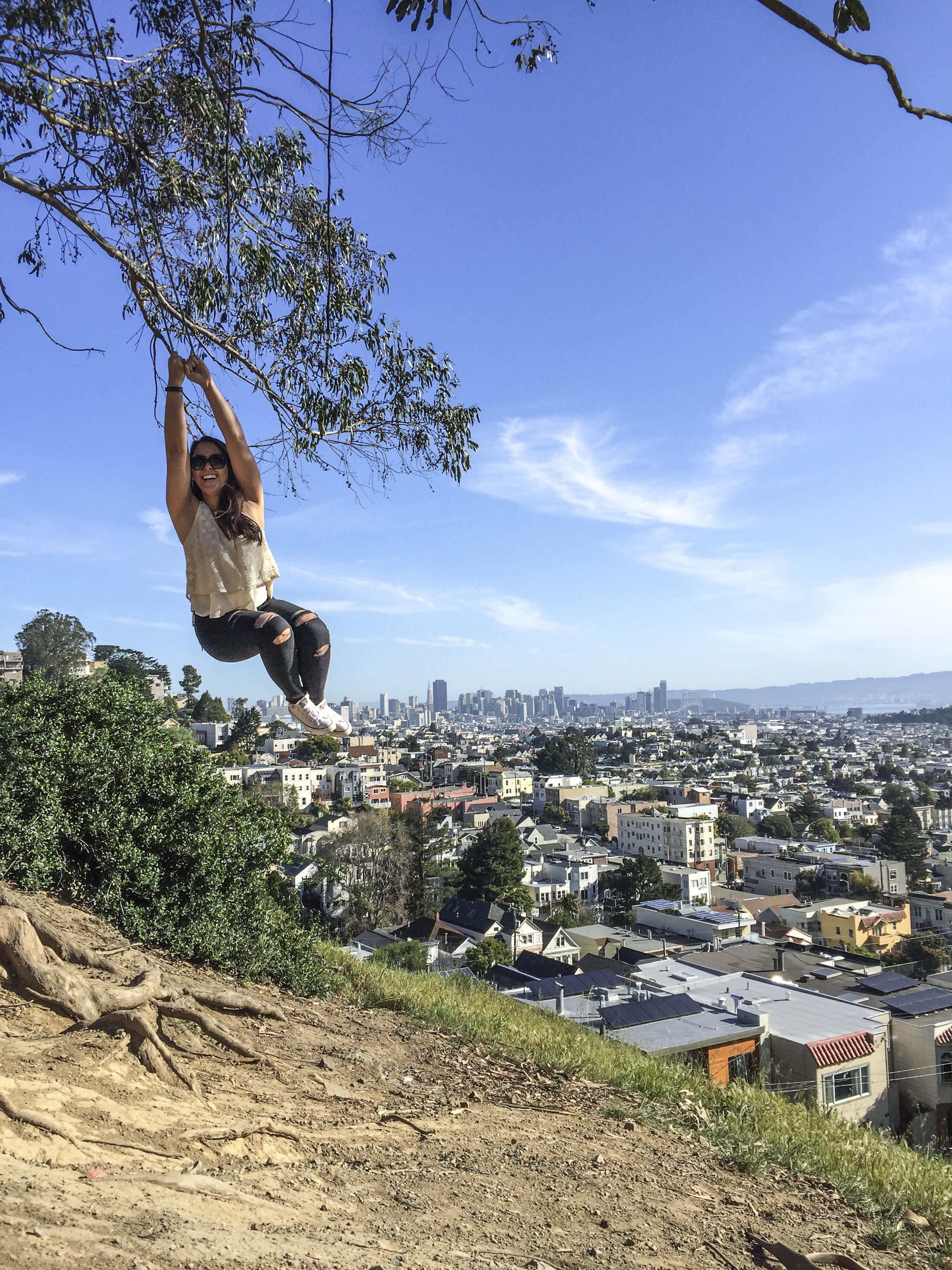 Billy Goat Hill Park Swing San Francisco California