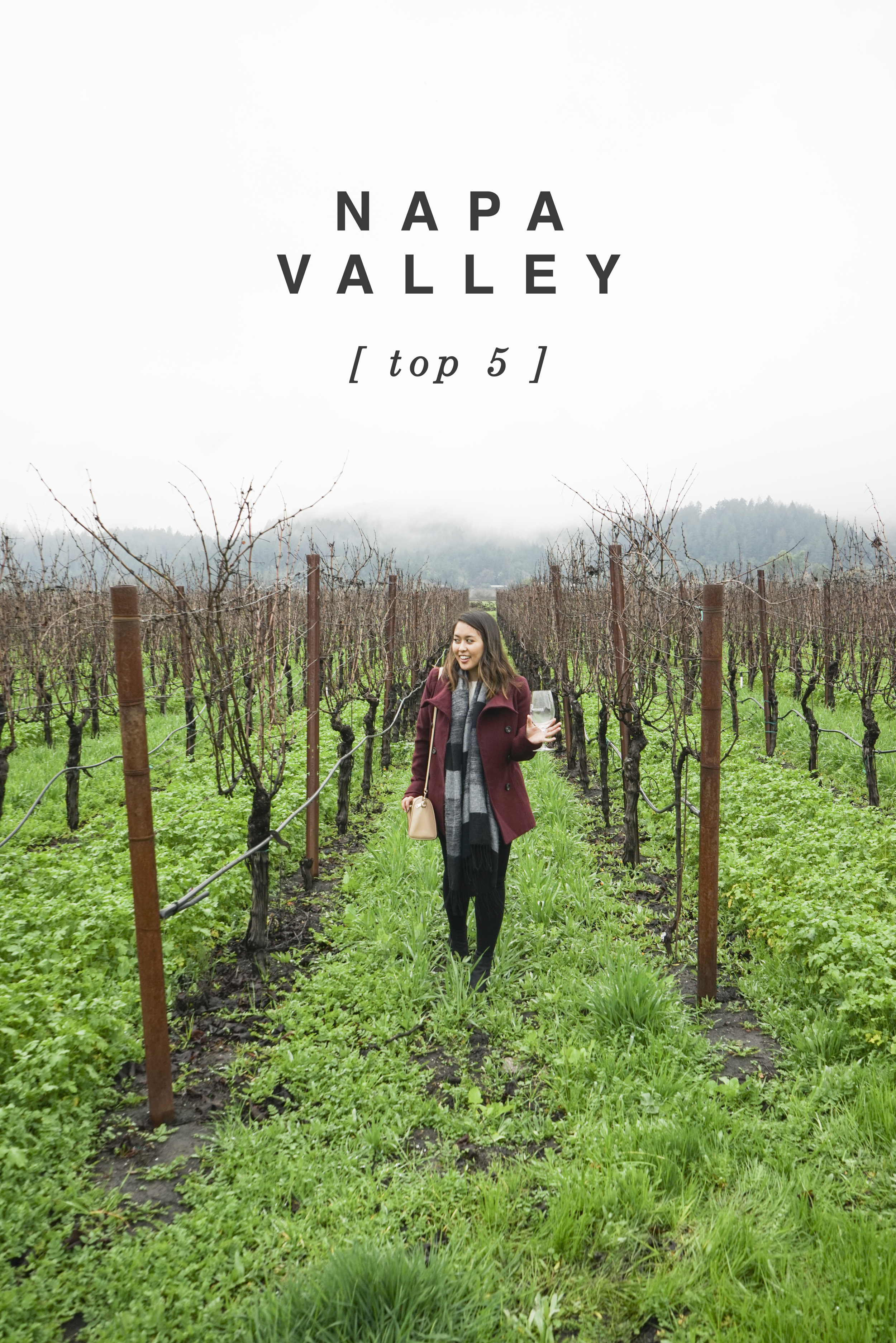 Napa Valley Top 5 - Shannon Did What