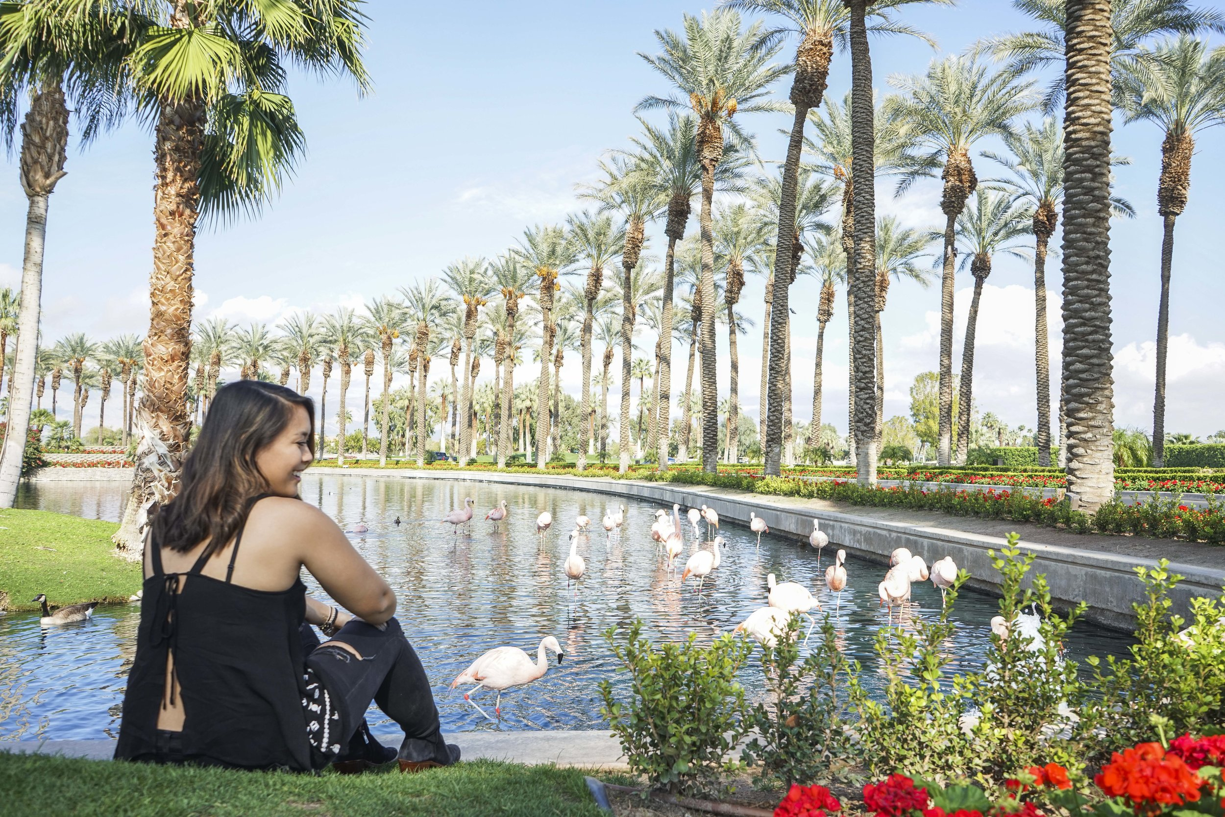 Palm Springs Getaway | Shannon Did What?