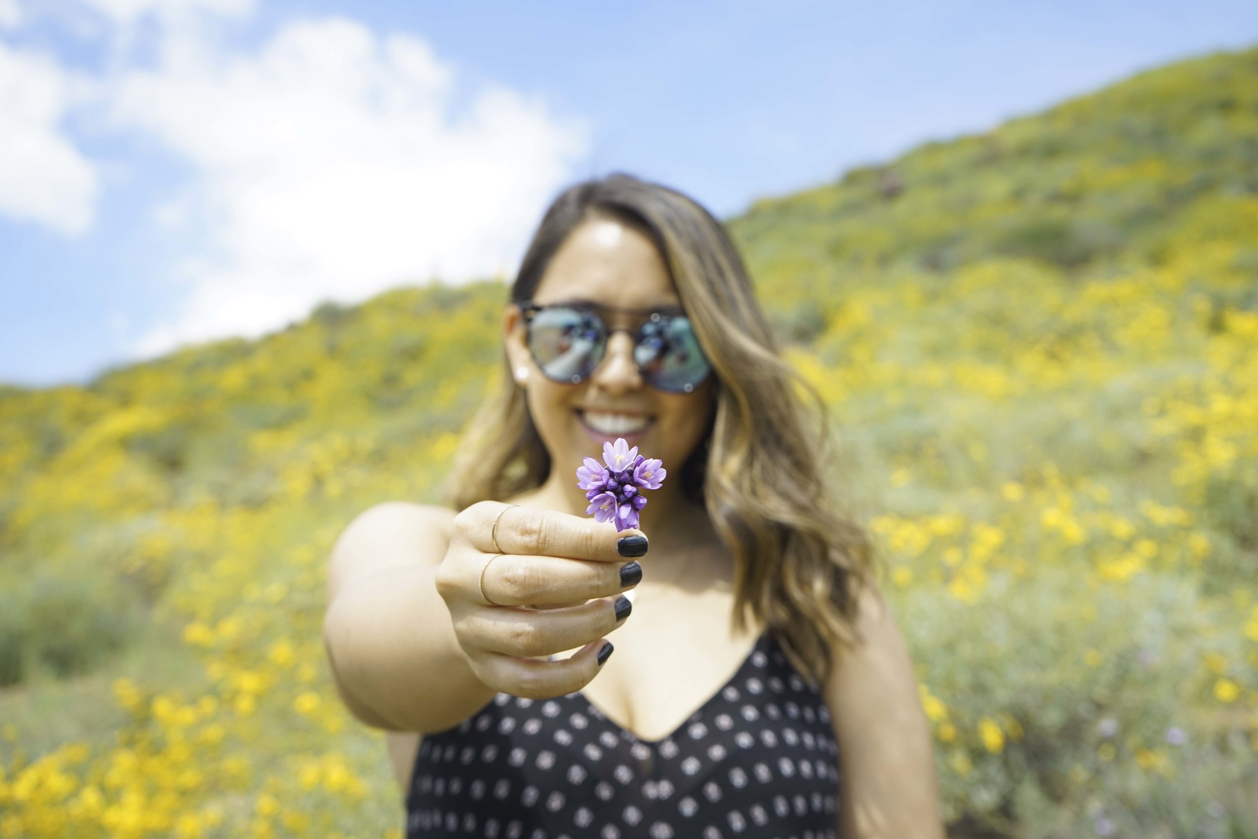 Super Bloom, Walker Canyon | Shannon Did What?