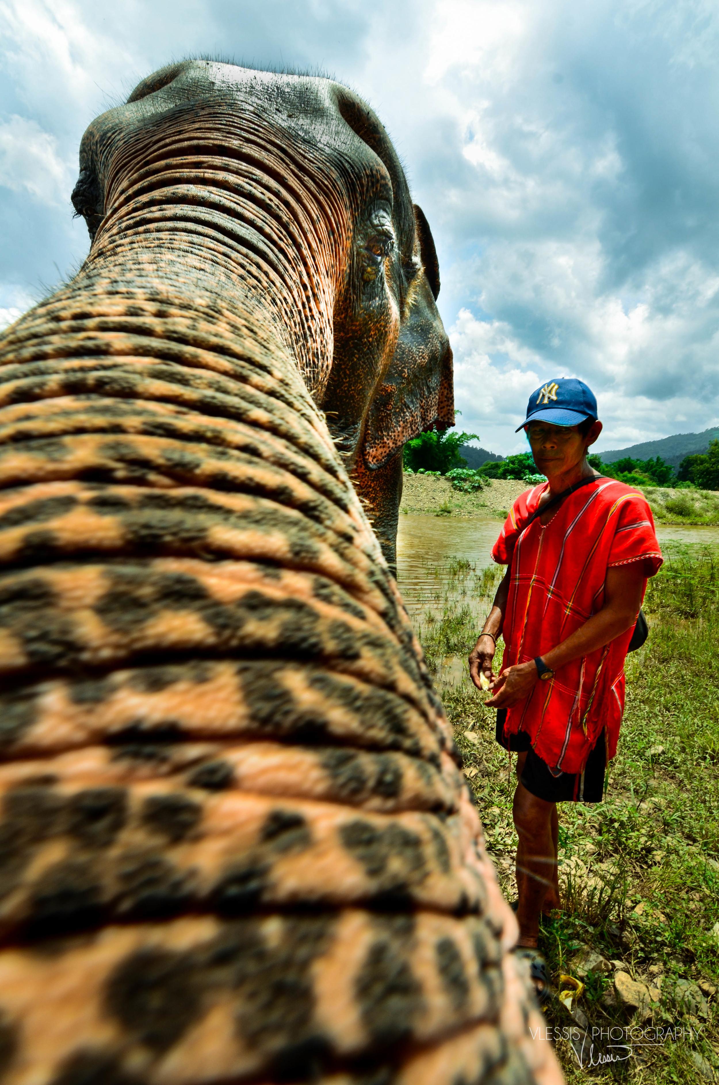 Thailand (1 of 1)-12.jpg