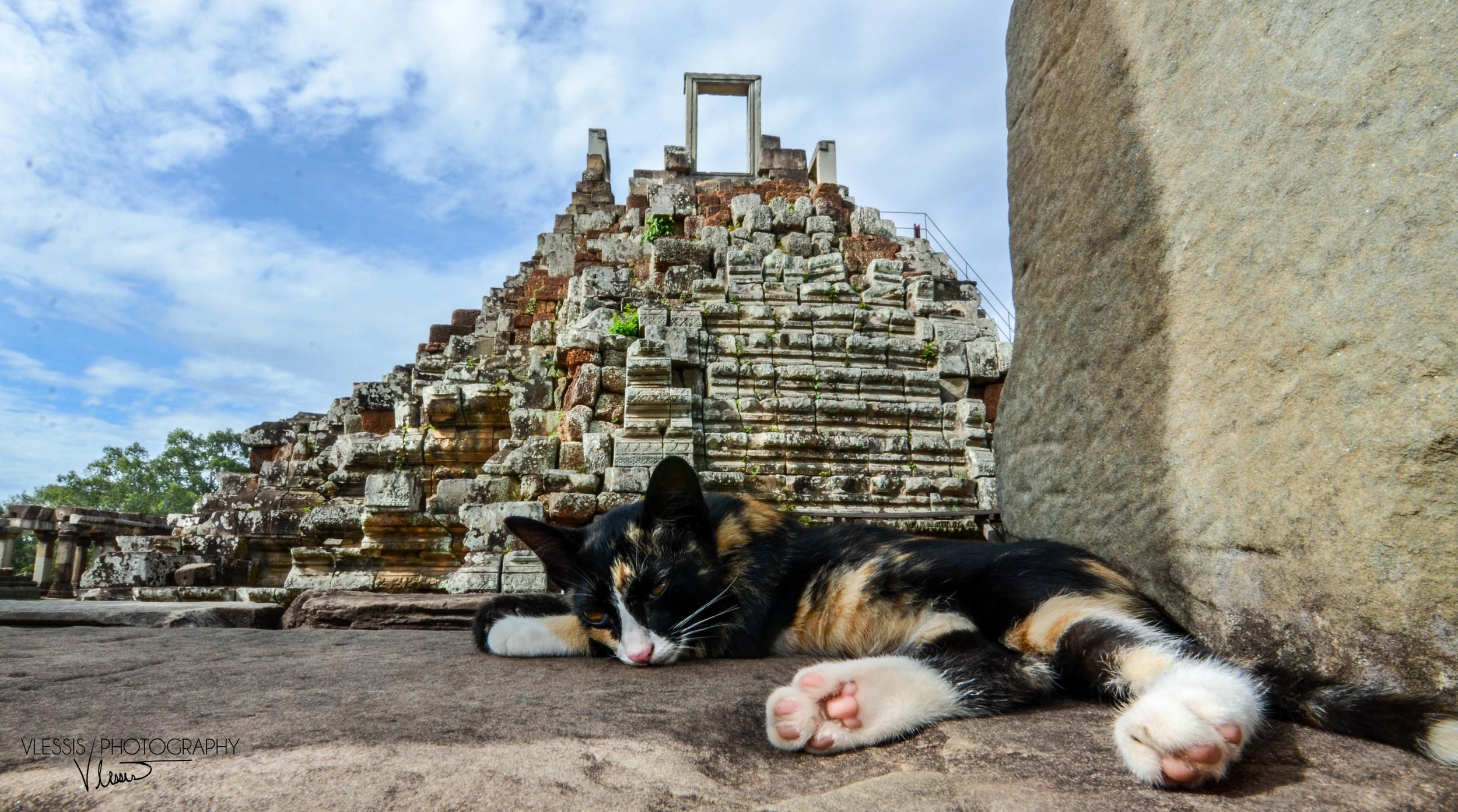 Cambodia (1 of 1)-3.jpg