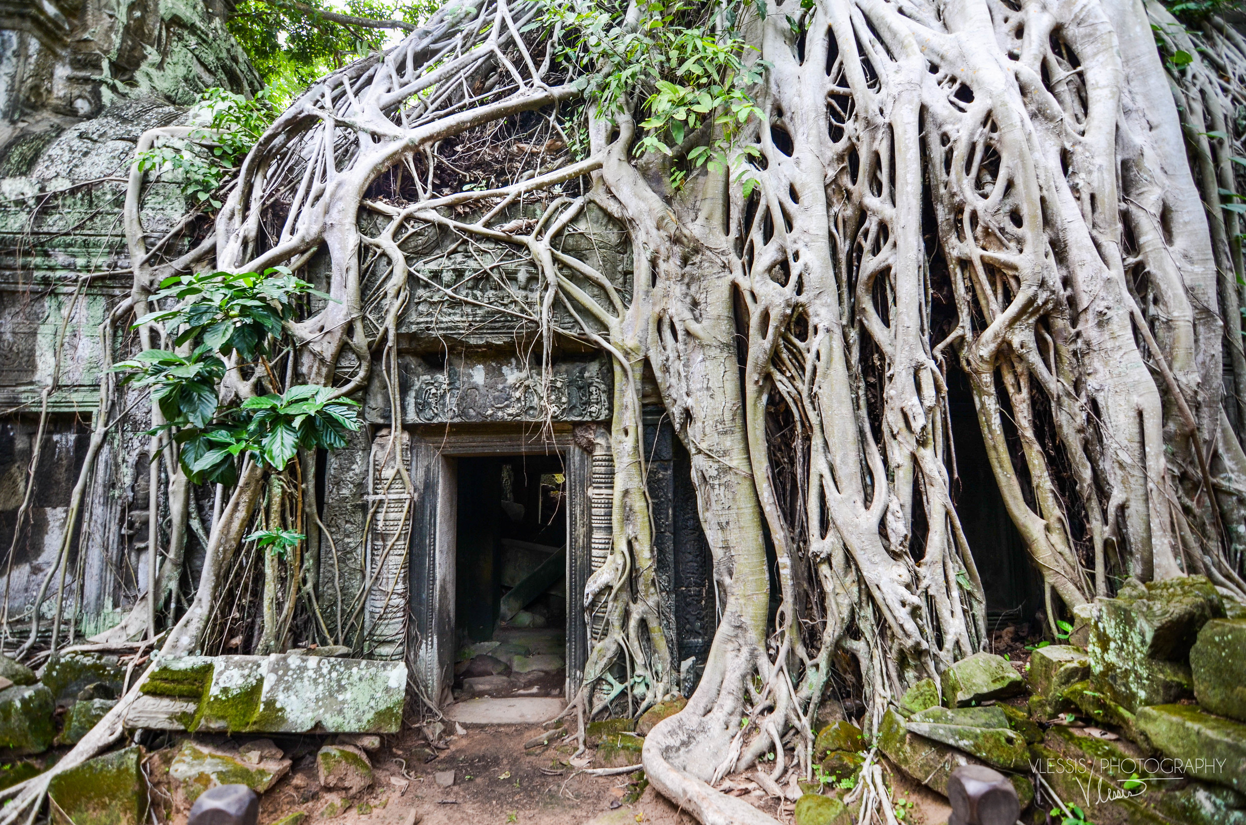 Cambodia (1 of 1)-5.jpg