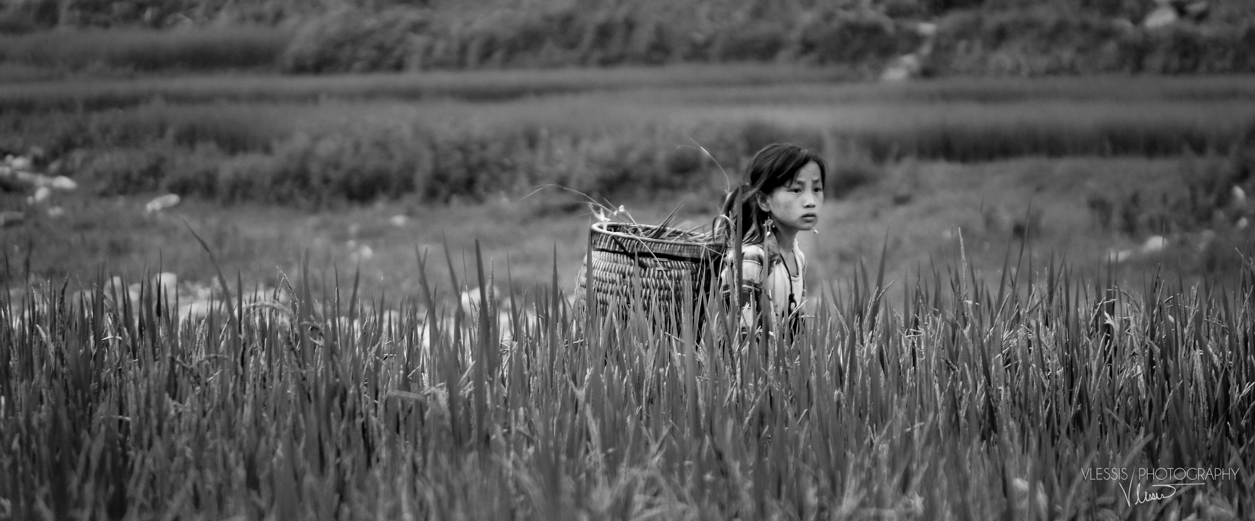 Vietnam (1 of 1)-7.jpg