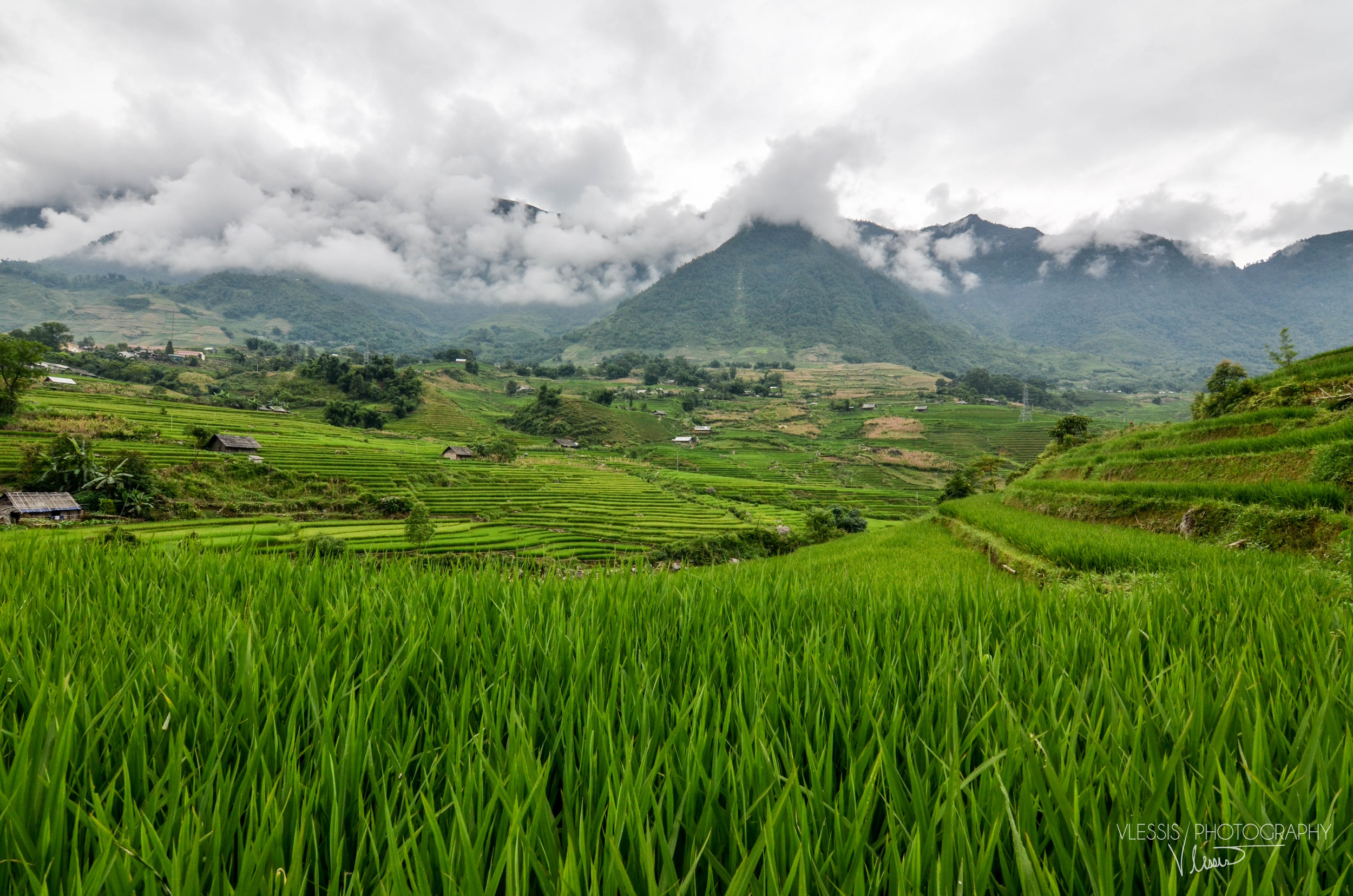 Vietnam (1 of 1)-10.jpg