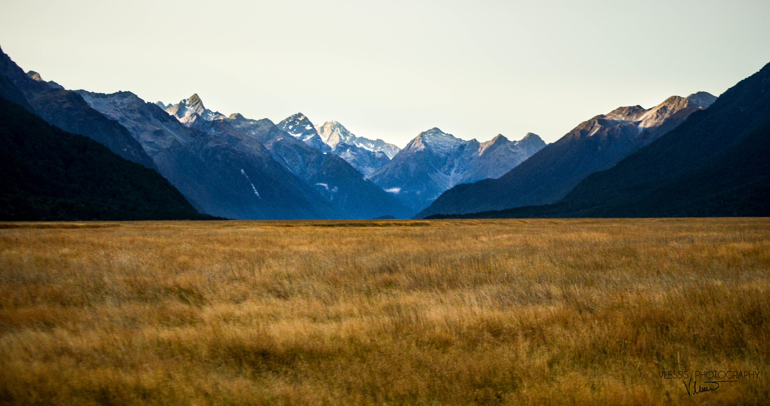 NZ (1 of 1)-3.jpg