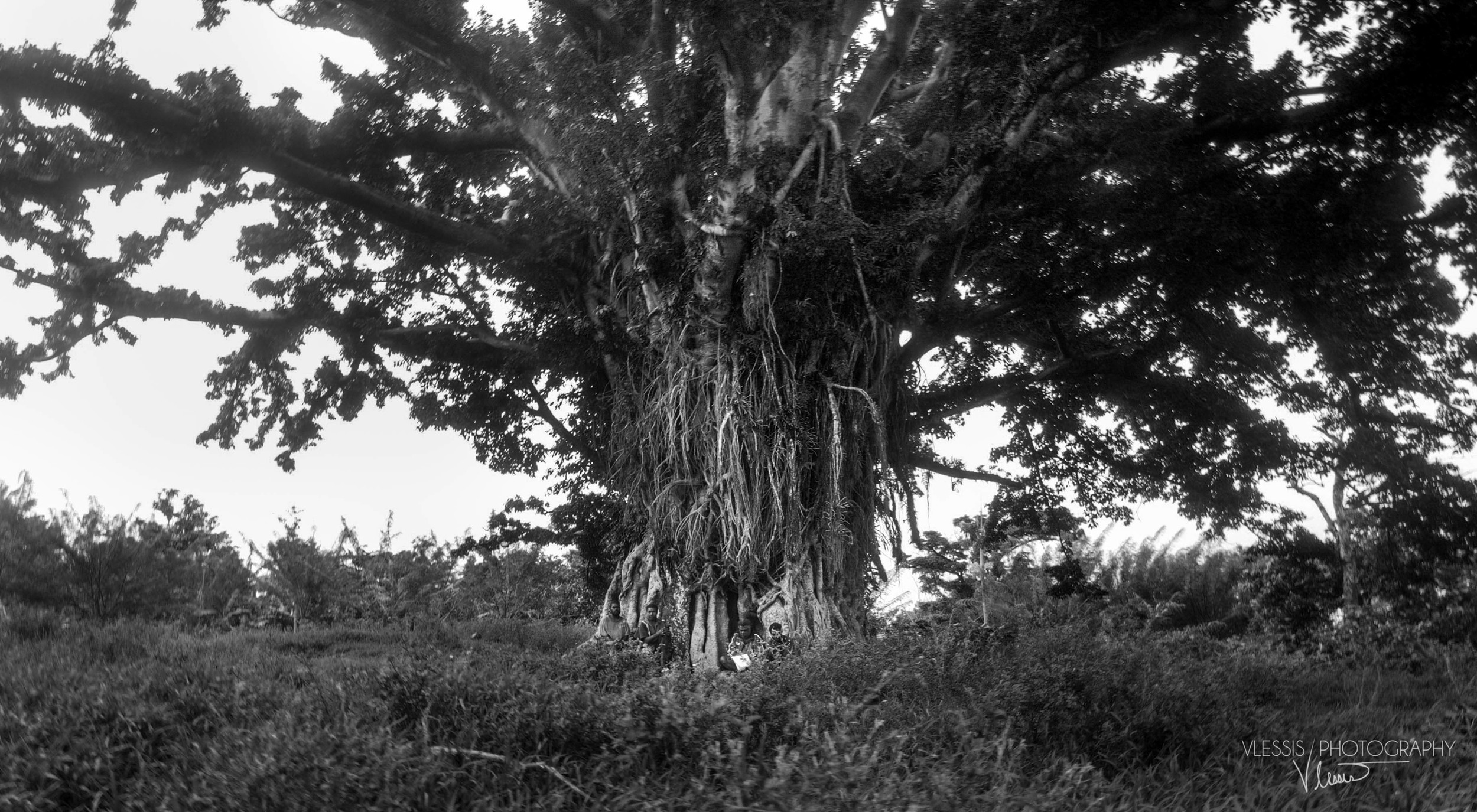 Vanuatu14 (1 of 1).jpg