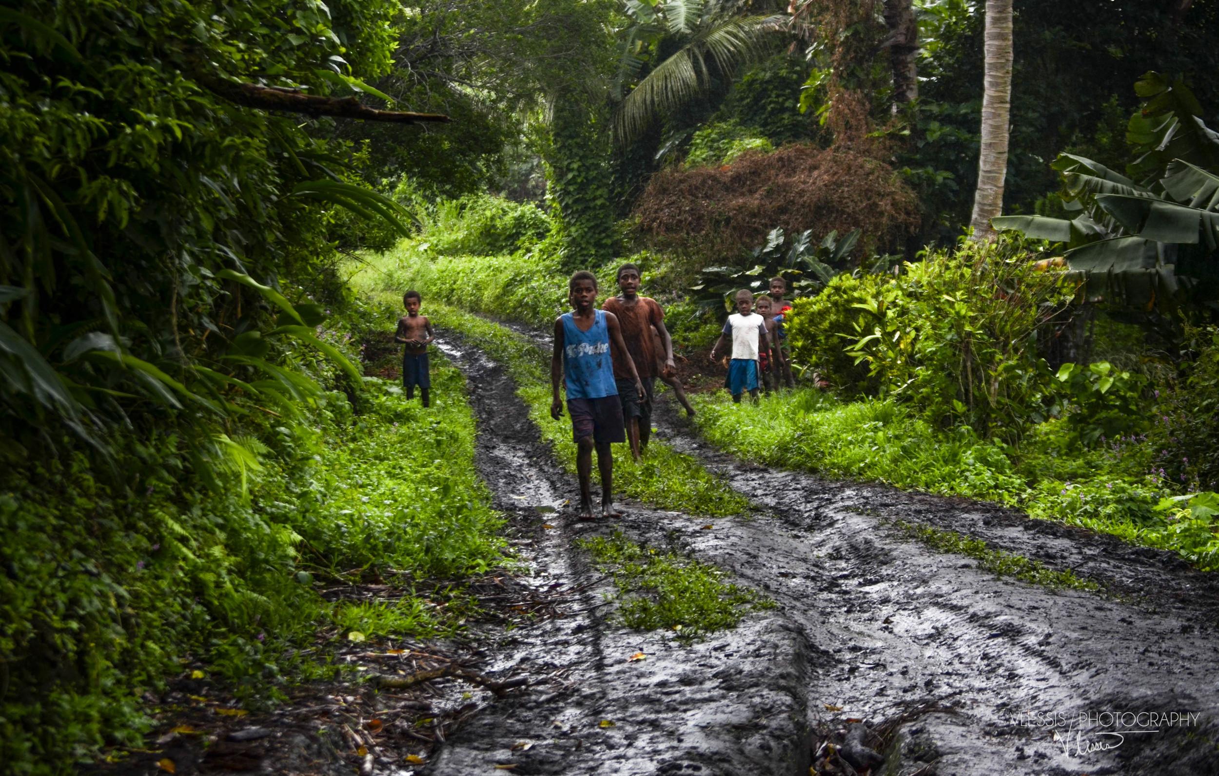 Vanuatujungle (1 of 1).jpg