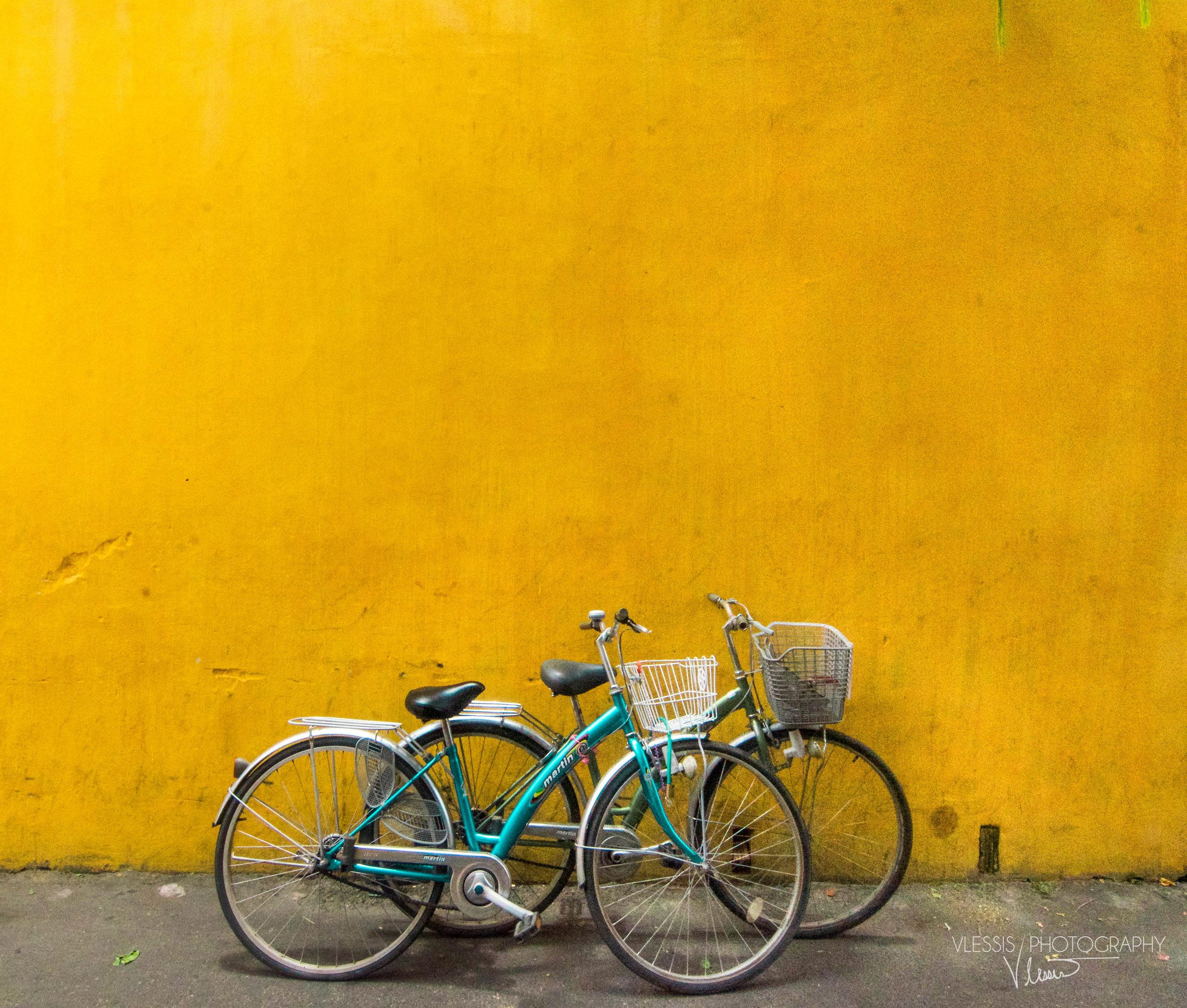Vietnambike (1 of 1).jpg