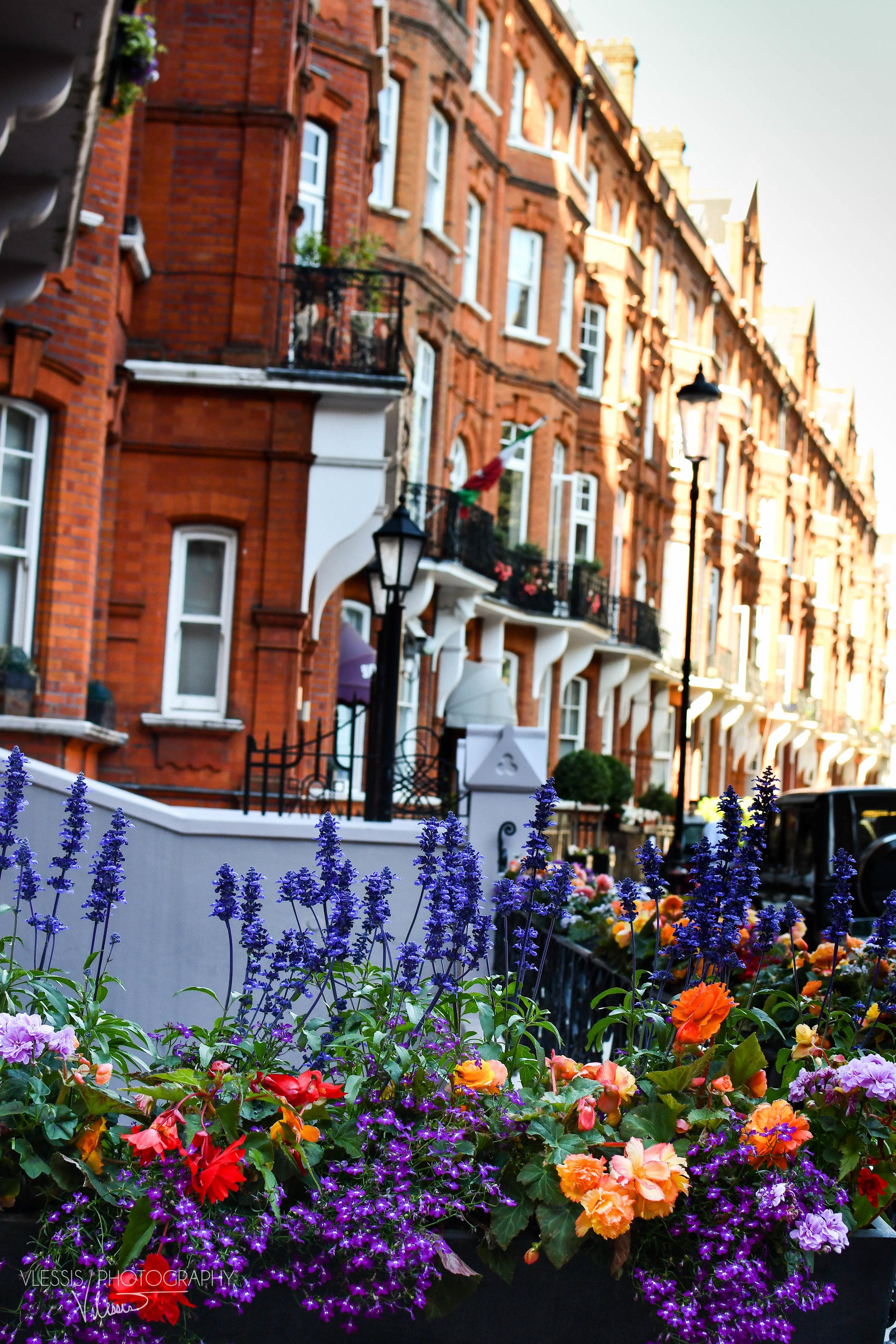 London (1 of 1)-2.jpg